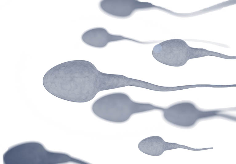 infertility-testing_afs.-mvljpg